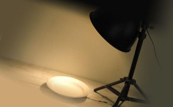 Ламповая ловушка от блох
