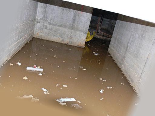 Подвал, где живут клопы