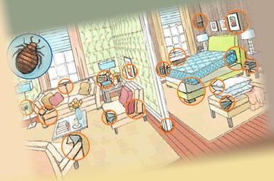 Места для подготовки квартиры