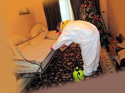 Как в домашних условиях уничтожить клопов