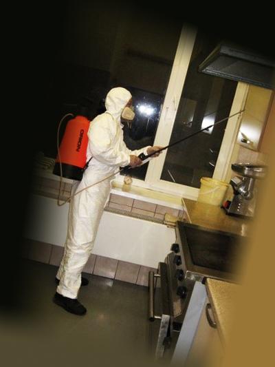 Процесс дезинсекции квартиры от тараканов