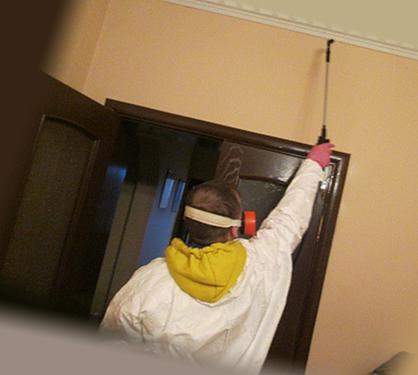 Обработка квартиры в прихожей от клопов