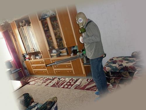 Дезинфекция в квартире, начало
