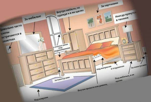 Места в квартире для обработки уксусом