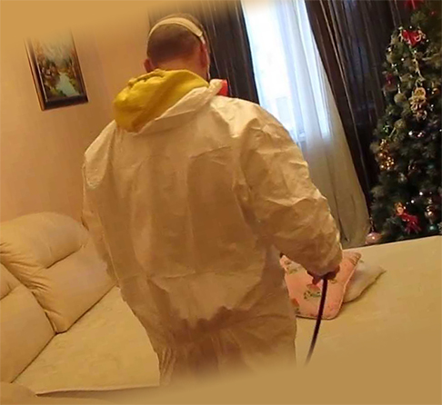 Обработка дивана химическими средствами