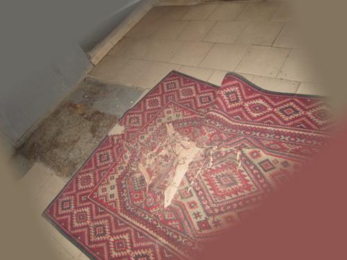 Клопы в ковре