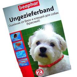 Обработка собак от блох в домашних условиях