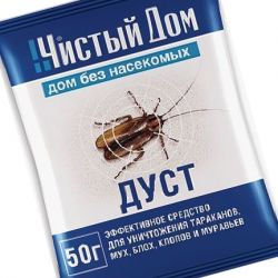 Дуст от тараканов: что нужно знать?