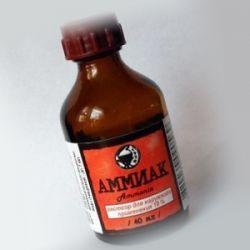 Что нужно знать про нашатырный спирт, как средстве от тараканов?